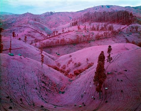 PHOTOS: Stunning Pink Landscapes Of The Deadly War Torn