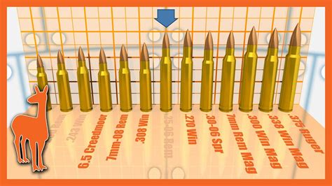1000 Yard Savage Axis Rifle: Which Cartridge is Best