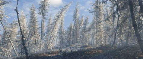 theHunter Call of the Wild Gets Medved-Taiga Map and