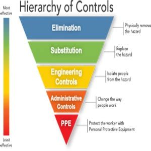 hierarchy - HSCT