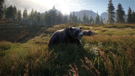 theHunter Call of the Wild 2019 Edition Is Packed With