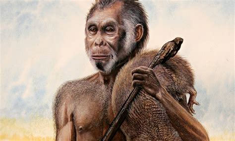 Mankind and its Relatives - Modern Homo Species