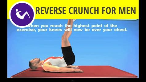 Exercises for Lower Abs - Reverse Crunch - YouTube
