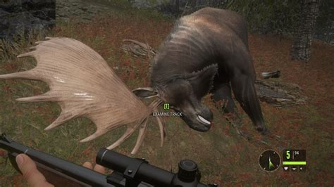 Game Trainers: theHunter Call of the Wild v1
